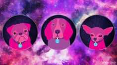 The stars will help you figure out which furry friend matches your personality