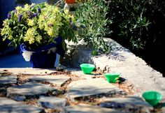 Save money, cover potted plants that fit your style. Cinque Terre Wedding www.cinqueterrewedding.com