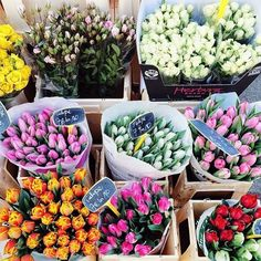 #brightlydecoratedlife tip: the best things in life involve flowers