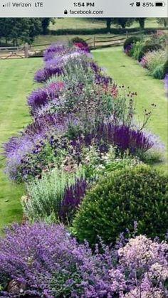 Garden Yard Ideas, Lawn And Garden, Landscaping Plants, Front Yard Landscaping, Cottage Garden Design, Garden Borders, Shade Garden, Dream Garden, Garden Planning