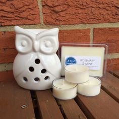 Scented Wax Melts, Wax Melt Gift Set, Soy Wax Melts, Vegan Gift Set, Owl Gift Set, Wax Melt Warmer, Wax Tarts, Gifts for Mom, Gifts for Her by AtoZCandles on Etsy https://www.etsy.com/listing/277068058/scented-wax-melts-wax-melt-gift-set-soy