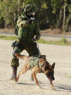 Military War K9 Hero & Handler - God Bless & Protect both of you!