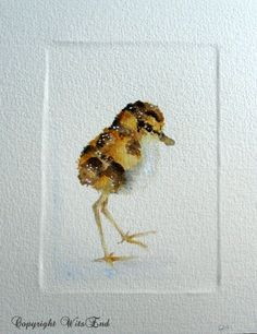 Shore Bird painting original watercolor baby Spoonbill Sandpiper chick by 4WitsEnd, via Etsy