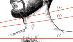 ESQ0508050H-beard-lg