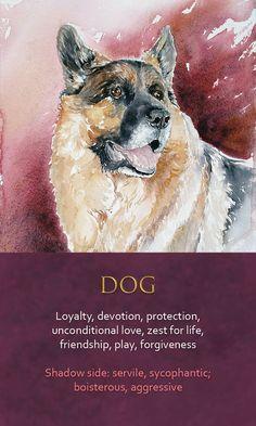 Animal Meanings, Animal Symbolism, Symbols And Meanings, Spirit Animal Totem, Animal Spirit Guides, Your Spirit Animal, Power Animal, Animal Magic, Spiritual Animal