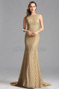 Sleeveless Beige Lace Long Evening Dress Formal Gown (X00155214)