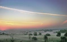 EARLY MORNING FOG #forestry_fields  #sky  #sunrise
