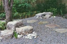I have an area where no grass will grow...... may have to do a gravel and rock garden.