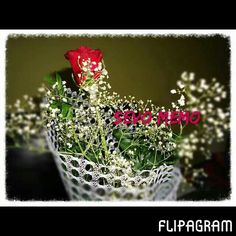 #Flipagram #video #Sevo ♥ #Memo