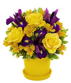 Thinking Of You - Theshopstation Same Day Flower Delivery Fresh Flowers Online Orchids - Wedding Flowers - Birthday Flowers - Send Flowers - Floral Arrangements - Orchids Bouquets Cheap Flowers, Flowers For You, Fresh Flowers, Spring Flowers, Beautiful Flowers, Send Flowers, Get Well Soon Flowers, Birthday Flower Delivery, International Flower Delivery