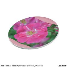 Red Thomas Rose Paper Plate