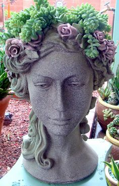 Donkey tail in head planter, talk about a perfect balance with the plants and planter! Cathy T #facepots