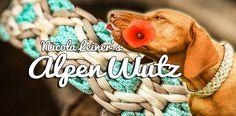 AlpenWutz | Swiss Paracord