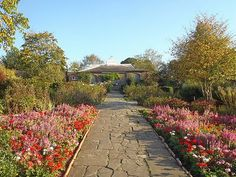 Tired of London, Tired of Life: Walk in Brockwell Park Walled Garden http://bit.ly/AgBc9e