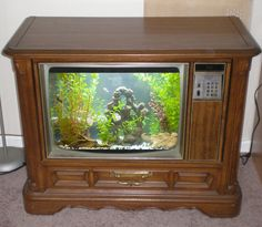 Convert an old TV into an awesome fish tank with these step-by-step instructions on how to build your own for the DIY types out there