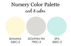 Gray, Blue and Yellow Nursery Color Palette