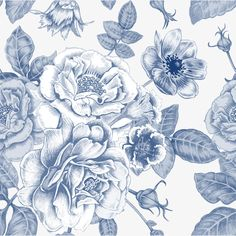 Hand painted blue flowers PNG and Vector
