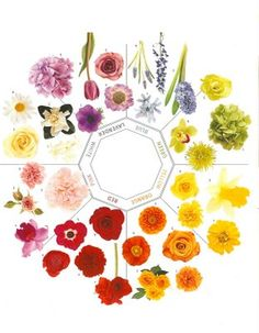 helpful little flower chart... yes this is.
