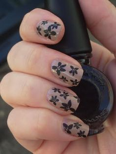 Emily's Nail Files