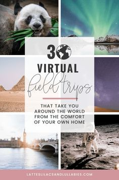 The world is a big and fascinating place, and now you and your kids can explore it with these virtual field trips you can enjoy… Virtual Travel, Virtual Tour, Virtual Reality, Northern Lights Norway, Virtual Field Trips, Kids Education, History Education, Teaching History, Home Learning