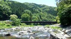 Japanese Summer - So Many Greens