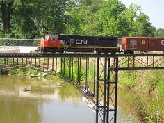 g scale trains   Scale Train Fun: Our Visit to Winona Garden Railway - Part 2 - 07-17 ...