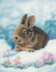 Baby Bunny - Susan Gardos