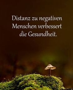Distance to negative people improves health - skin treatment - Hautbehandlung - Quotes Inspirational Quotes For Students, Motivational Quotes For Life, Faith Quotes, True Quotes, Quotes To Live By, True Sayings, Happy Quotes, Positive Thoughts, Positive Quotes