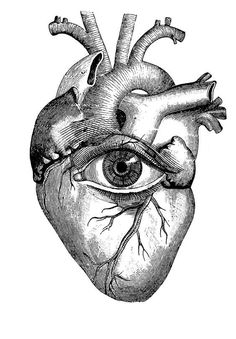 And color the eye pale blue like tell tale heart by edgar allen poe anatomical heart Anatomical Heart Drawing, Human Heart Drawing, Brain Drawing, Coeur Tattoo, Arte Obscura, Desenho Tattoo, Anatomy Art, Anatomy Tattoo, Heart Anatomy