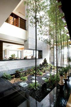 Plantes vertes pour votre intérieur
