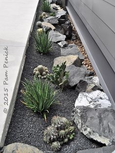 Modern gravel garden sips water, amps up architecture - Digging Dry Garden, Gravel Garden, Side Garden, Garden Water, Garden Tips, Garden Ideas, Gravel Landscaping, Landscaping With Rocks, Front Yard Landscaping