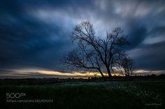 Sunset Salento - Italy