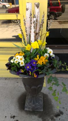 Spring urn at Tabule Restaurant Yonge St. location. Designed by Tracy Harper Interior Design in Toronto.