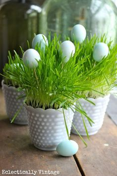 Grow Your Own Spring Grass Centerpiece - perfect for Easter kellyelko.com #easter #eastercrafts #spring #springcrafts #eastereggs #tipsandtricks