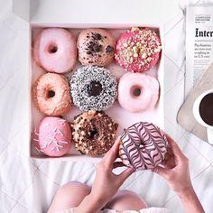 donut @thetiafox • 14.7 mil Me gusta