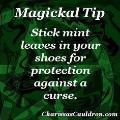 Witchy Tip-Mint curse protection Wiccan Witch, Magick Spells, Witchcraft, Curse Spells, Wiccan Magic, Spells For Beginners, Herbal Magic, Protection Spells, Witch Spell