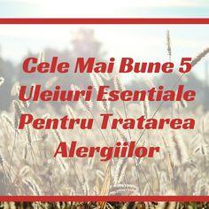 Cele Mai Bune 5 Uleiuri Esentiale Pentru Tratarea Alergiilor Mai, Allergies, Healthy, Health