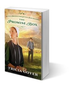 Amish Fiction by Tricia Goyer.