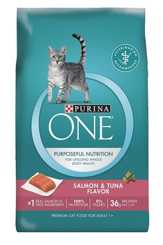 Purina ONE Salmon and Tuna Dry Cat Food *** Startling review available here  : Best Cat Food