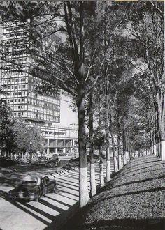 Paseo Los Caobos, Caracas años 50's