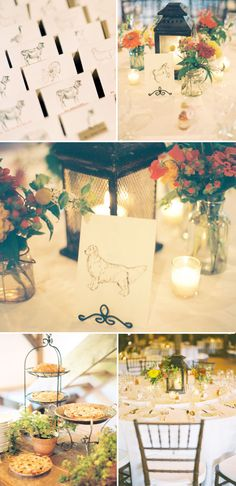 animal sketch table cards