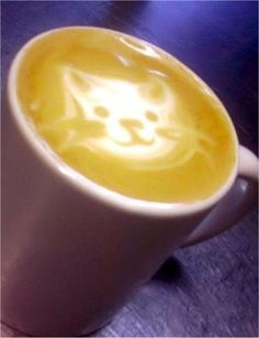 cat coffee art