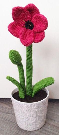 Haakpatroown amaryllis bloem, lees meer over dit patroon op Haakinformatie. Crochet Mandala, Crochet Flowers, Cute Crochet, Crochet Crafts, Ribbon Yarn, African Flowers, Flower Applique, Crochet Patterns, Crochet Animals