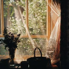 Pflanzengarn schwul - Rooms and houses - Vie Simple, Anne Of Green Gables, Scenery, In This Moment, Pretty, Photos, Beautiful, Design, Windows