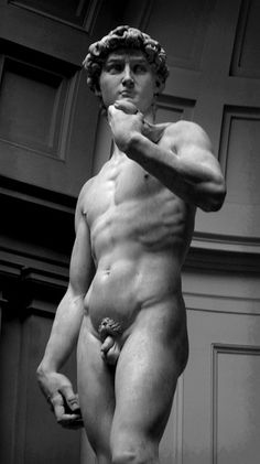 The real David, Firenze