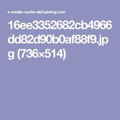 16ee3352682cb4966dd82d90b0af88f9.jpg (736×514)