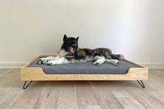 (paid link) Dog Bedroom - Easy Ways to Make a Dog Bedroom #dogbedroom Wood Dog Bed, Diy Dog Bed, Raised Dog Beds, Pallet Dog House, Dog Bedroom, Elevated Dog Bed, Dog Cots, Orthopedic Dog Bed, Dog Furniture