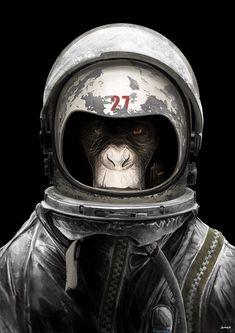 Stellar Obras astronauta