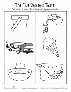 5 Senses Preschool Printables   Things You Can Taste   Worksheet   Education.com