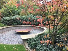 Gravel Garden, Garden Projects, Garden Ideas, Back Gardens, Preston, Amazing Gardens, Garden Inspiration, Stepping Stones, Carry On